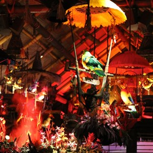 32 of 38: Walt Disney's Enchanted Tiki Room - Opening Day