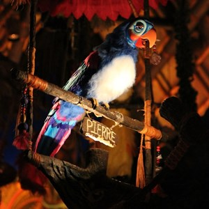33 of 38: Walt Disney's Enchanted Tiki Room - Opening Day