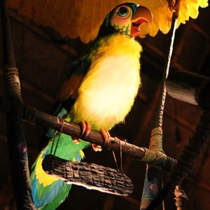 34 of 38: Walt Disney's Enchanted Tiki Room - Opening Day