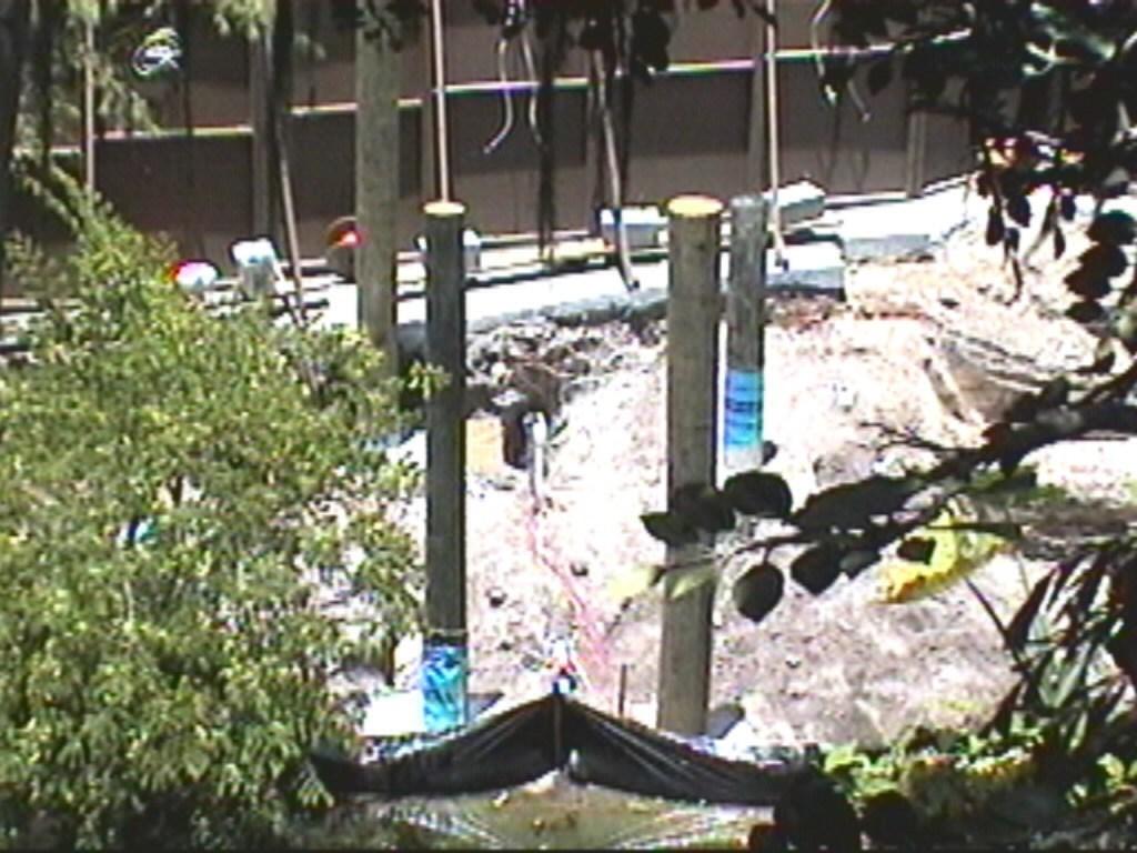 Aladdin Construction underway in Adventureland
