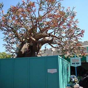 2 of 4: The Many Adventures of Winnie the Pooh - Pooh's Playful Spot tree relocated to The Many Adventures of Winnie the Pooh queue