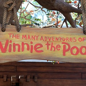 2 of 31: The Many Adventures of Winnie the Pooh - New queue area