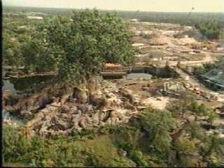 Tree of Life construction