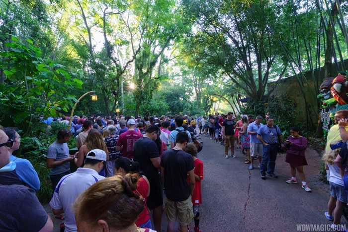 Opening day crowds at Pandora - The World of Avatar