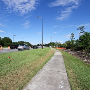 4 of 4: Disney Springs - Buena Vista Drive expansion road works