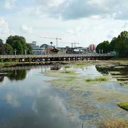Marketplace to Saratoga Springs Resort bridge and boat dock construction