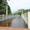 Disney Springs - Marketplace to Saratoga Springs bridge and boat dock - The walkway