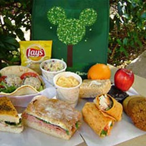 1 of 2: Animal Kingdom Picnic in the Park - Tier 1 features a chicken wrap, ham grinder, tuna pita, or turkey focaccia sandwich.