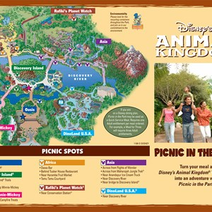 1 of 2: Animal Kingdom Picnic in the Park - Picnic in the Park - Front side. Copyright 2009 The Walt Disney Company.