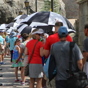 2 of 4: Be Our Guest Restaurant - Be Our Guest Restaurant summer queue umbrellas