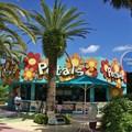 Petals Pool Bar