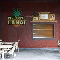 Pineapple Lanai