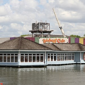 1 of 3: Rainforest Cafe Downtown Disney - Refurbishment