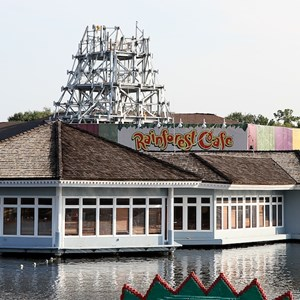 2 of 2: Rainforest Cafe Downtown Disney - Rainforest Cafe refurbishment construction