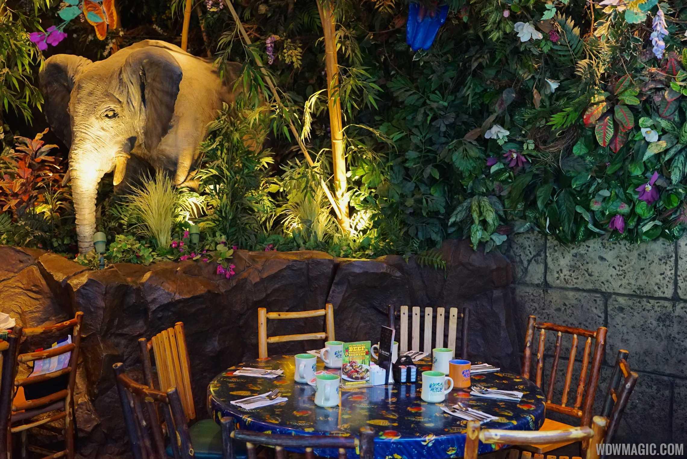 Rainforest Cafe Disney S Animal Kingdom