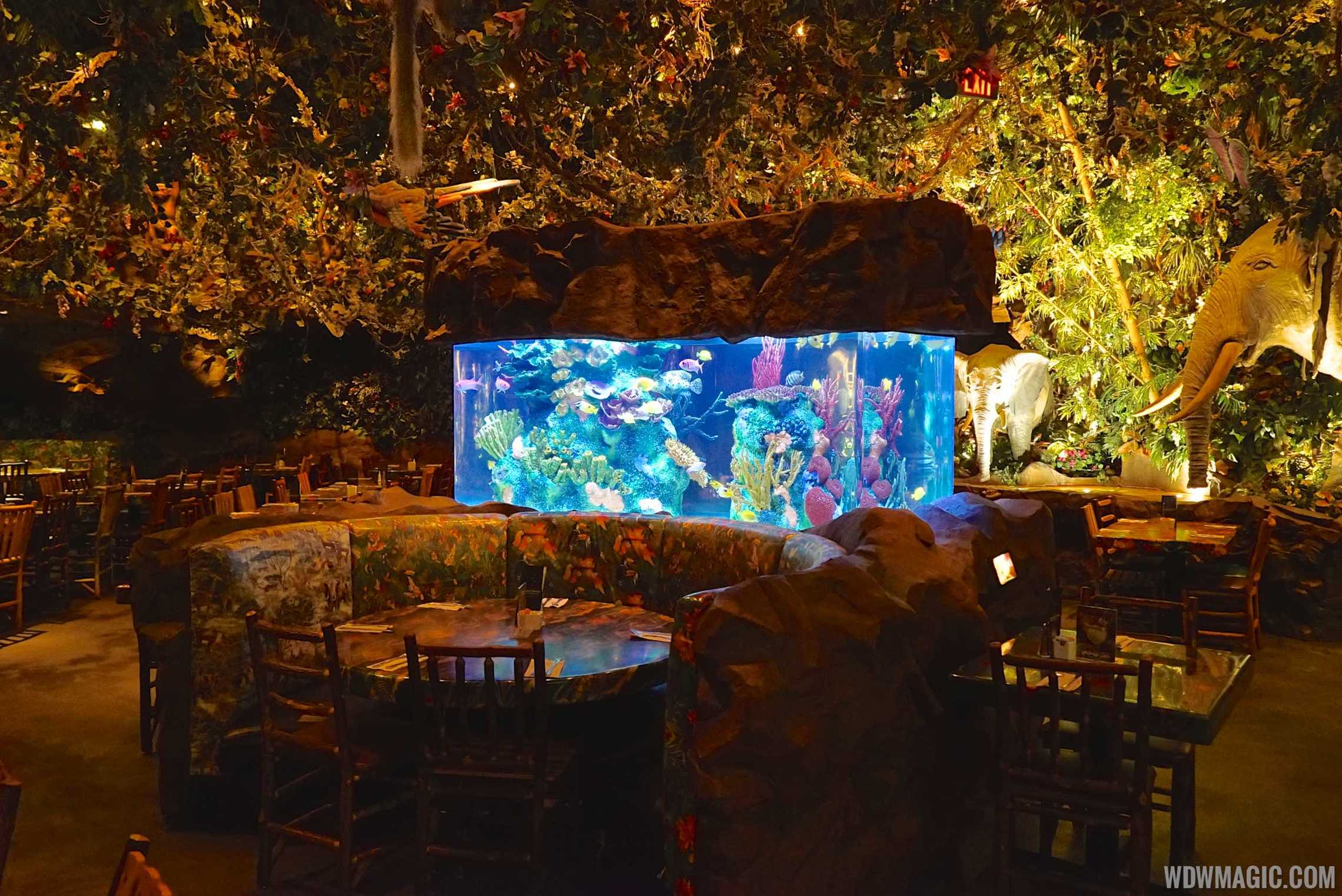 Animal Kingdom Rainforest Cafe Dining Plan