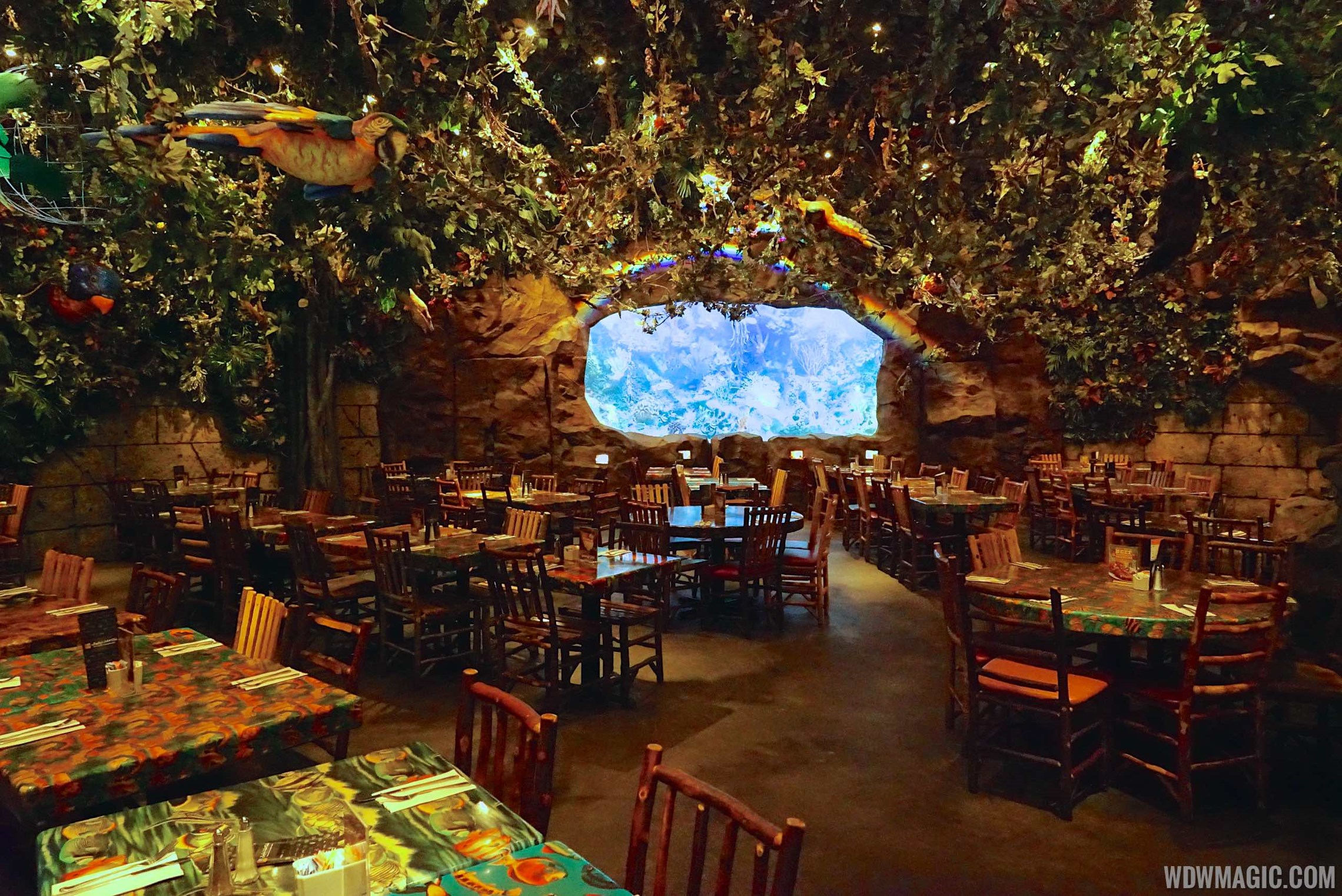Bedroom Shop Rainforest Cafe Disney S Animal Kingdom