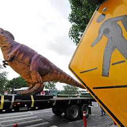 Interior show dinosaur gets delivered to T-Rex