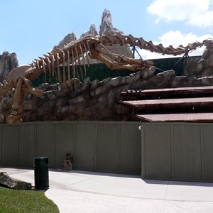 4 of 4: T-Rex - T-Rex restaurant construction