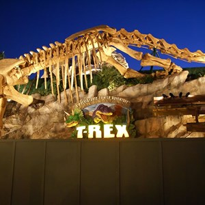 3 of 5: T-Rex - T-Rex restaurant construction