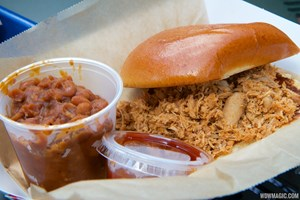 The Smokehouse - Pulled chicken sandwich
