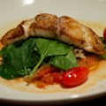 The Turf Club Bar and Grill - The Turf Club Bar and Grill food - Today's Sustainable Fish (Red Grouper)