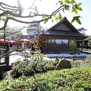 7 of 19: Katsura Grill - Katsura Grill opening day