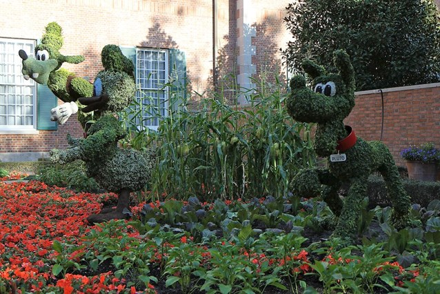 Epcot International Flower and Garden Festival - Donald, Goofy and Pluto topiary in the American Adventure garden