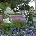 International Flower and Garden Festival - Mickey and Minnie topiary infront of the American Adventure