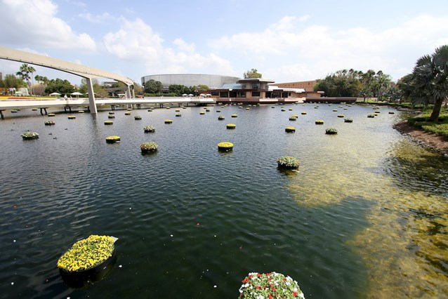 Epcot International Flower and Garden Festival - There are 240 of these floating gardens throughout the park