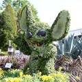 Epcot International Flower and Garden Festival - Stitch topiary near Mission Space