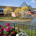 Epcot International Flower and Garden Festival - Future World West with stunning flowers in bloom