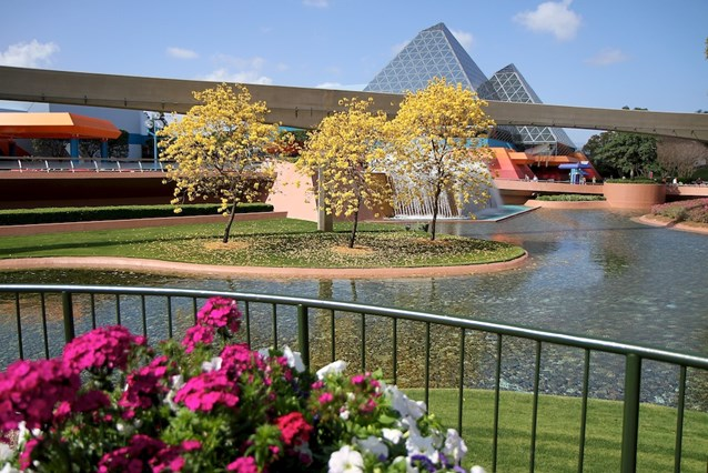 International Flower and Garden Festival - Future World West with stunning flowers in bloom