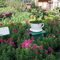 International Flower and Garden Festival - The English Tea Garden