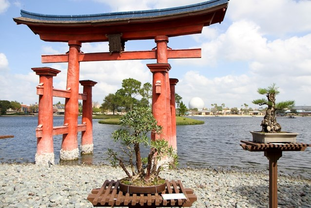 International Flower and Garden Festival - More of Japan's bonsai gardens