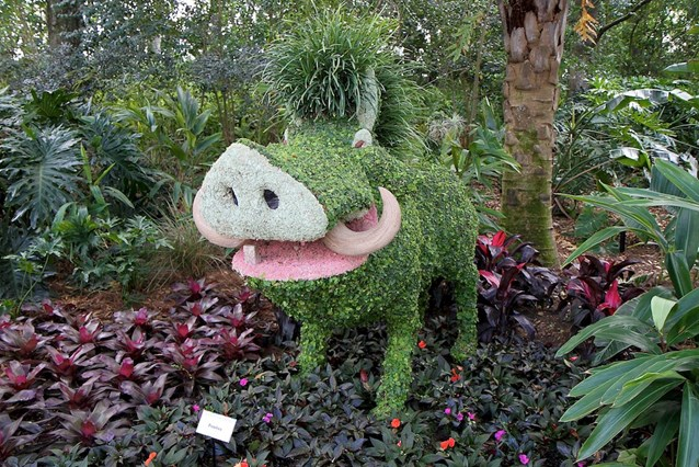 Epcot International Flower and Garden Festival - Pumba topiary at the Outpost