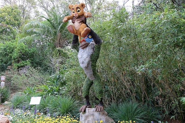 Epcot International Flower and Garden Festival - Simba and Rafiki topiary at the Outpost
