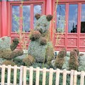 International Flower and Garden Festival - China's panda topiary