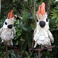 Epcot International Flower and Garden Festival - Mexico's exotic birds in topiary form