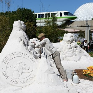 1 of 4: International Flower and Garden Festival - Completed Disney Nature sand sculpture
