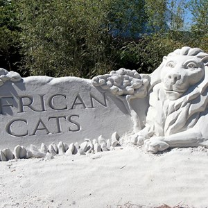 3 of 4: Epcot International Flower and Garden Festival - Completed Disney Nature sand sculpture