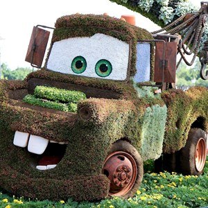 1 of 2: Epcot International Flower and Garden Festival - Mater topiary