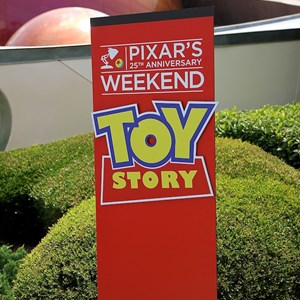 35 of 36: International Flower and Garden Festival - Pixar Weekend