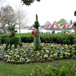 Flower and Garden Festival 2012 preparations