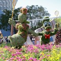 International Flower and Garden Festival - 2013 Epcot Flower and Garden Festival - Donald and Daisy badminton topiary