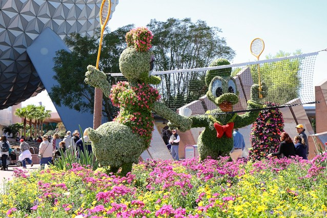 Epcot International Flower and Garden Festival - 2013 Epcot Flower and Garden Festival - Donald and Daisy badminton topiary
