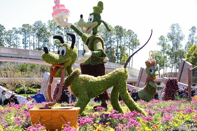 Epcot International Flower and Garden Festival - 2013 Epcot Flower and Garden Festival - Goofy and Pluto topiary