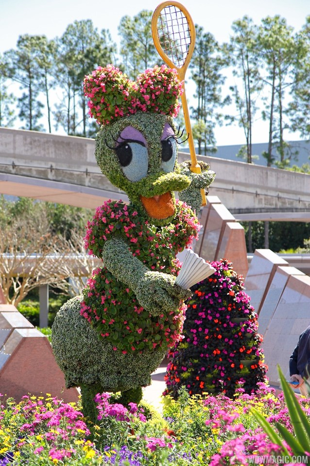 Epcot International Flower and Garden Festival - 2013 Epcot Flower and Garden Festival - Daisy topiary
