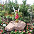 International Flower and Garden Festival - 2013 Epcot Flower and Garden Festival - Inside Tinker Bell's Butterfly House
