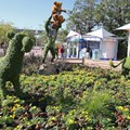 Epcot International Flower and Garden Festival - 2013 Epcot Flower and Garden Festival - The Lion King topiary